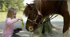 Mein Pony in Center Parcs Bispinger Heide
